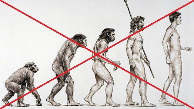 Une récente étude scientifique montre qu'hommes et animaux n'auraient pas évolué.