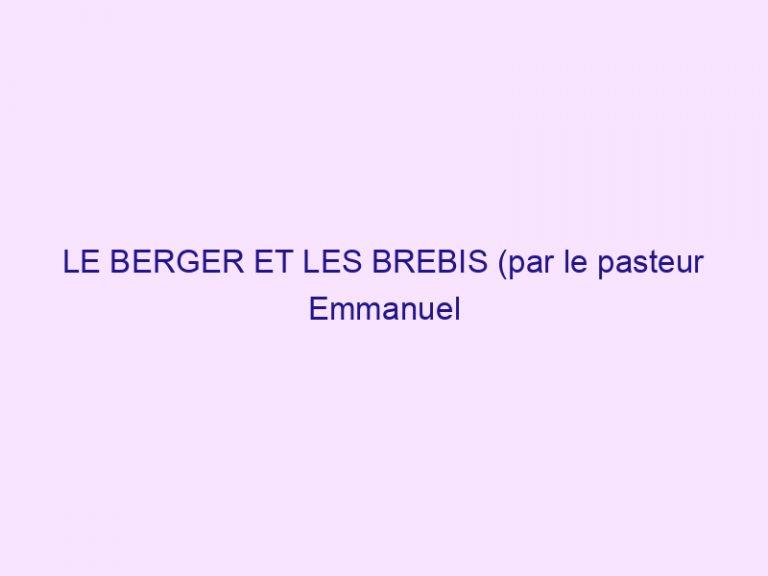 LE BERGER ET LES BREBIS (par le pasteur Emmanuel Piras)