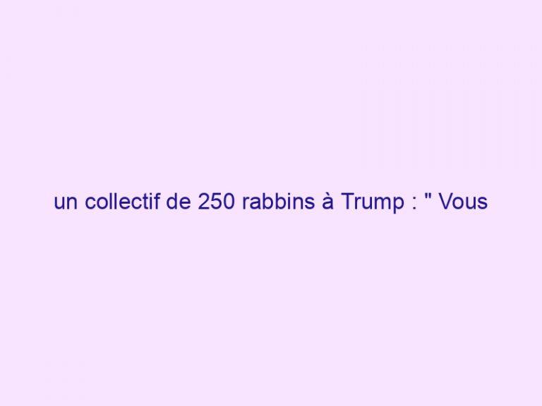 un collectif de 250 rabbins à Trump : » Vous accomplissez les prophéties.»